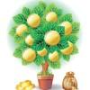 tree130805_02