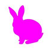 rabbit2017