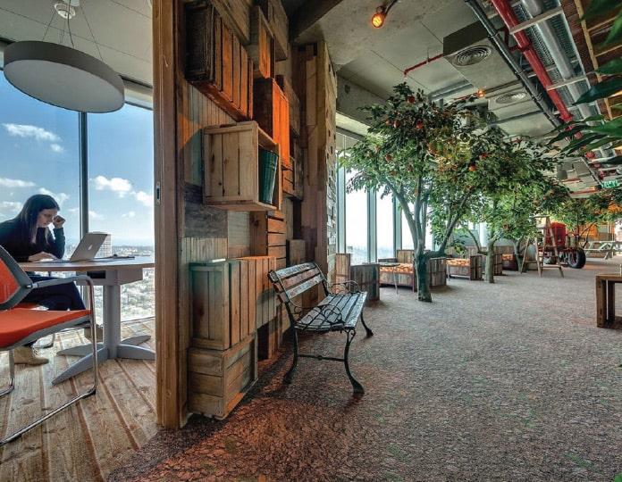 観葉植物のあるオフィス
