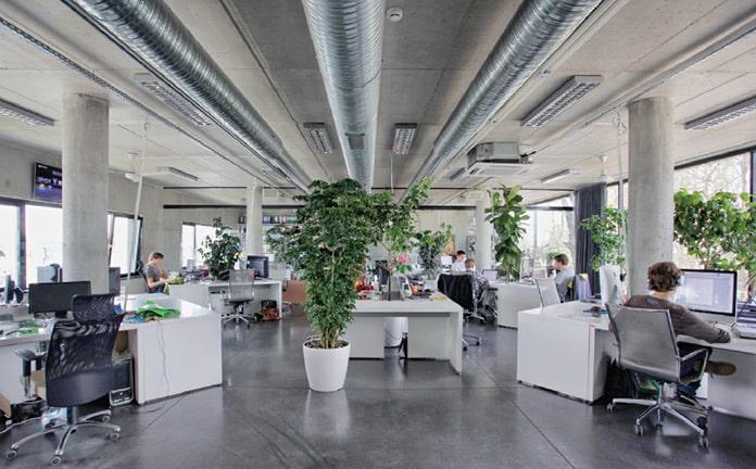 観葉植物のある社内