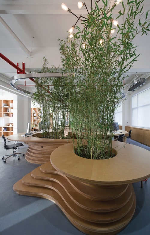 観葉植物があるオフィス