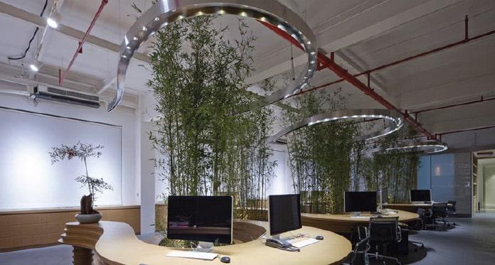 竹の木のある社内