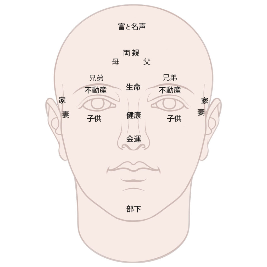 顔のゾーン別運気