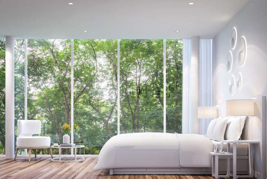 寝室から見える緑
